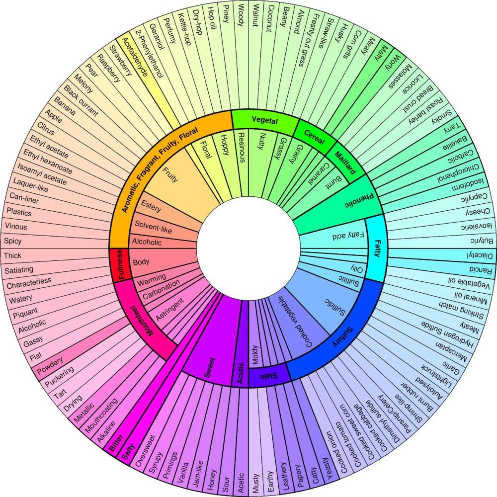 Breaking the Beer Stereotype Part 3: Beer Charts and Flavor Wheels (3/3)