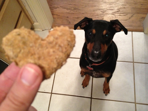 dog-treats-jack
