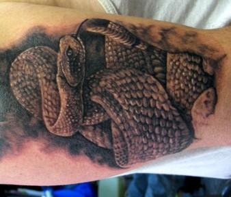 rattlesnake_tattoo_by_jasonrhodekill-d31rsp9