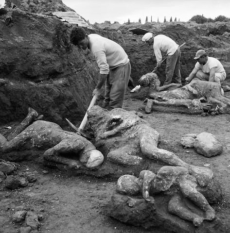 workers+with+casts+of+bodies+at+pompeii