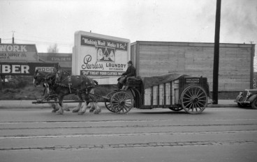 Horse-beer-cart-A11901-e1336005724364