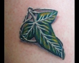 elvin_brouch_lotr_leaf_tattoo_now_chloe_vanessa