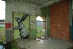 roa_rabbit_gent_4