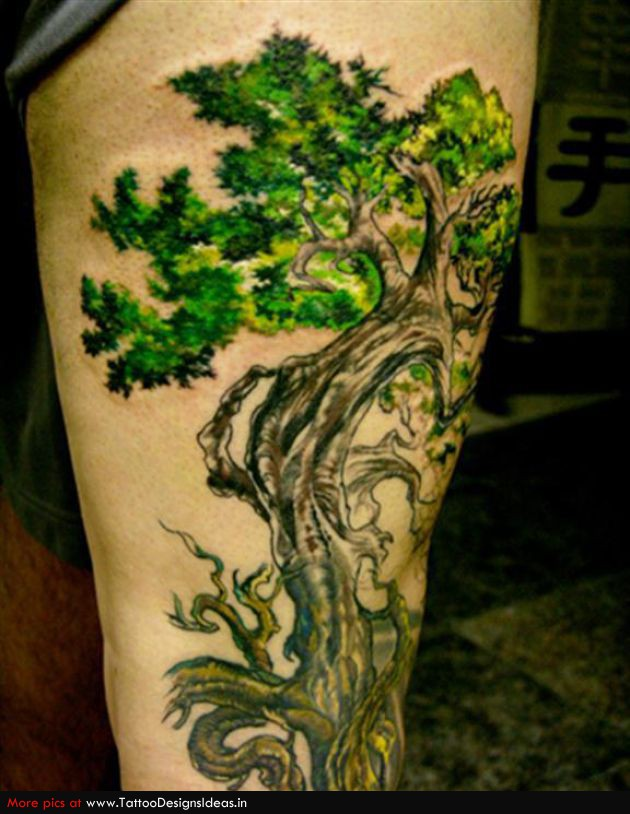 t1_Tree-Of-Life-Tattoos-tree-of-life_661